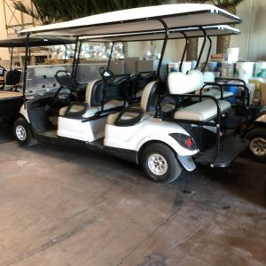 Products | Wheels In Motion – Golf Carts 4U